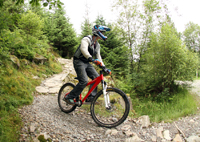 family rides and steep single track at the coed y brenin mountain bike center with snowdonia adventure activities